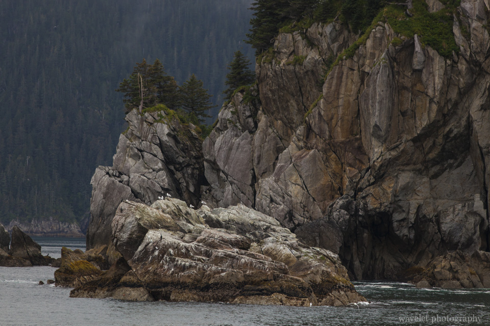 Kenai Fjords National Park, Alaska