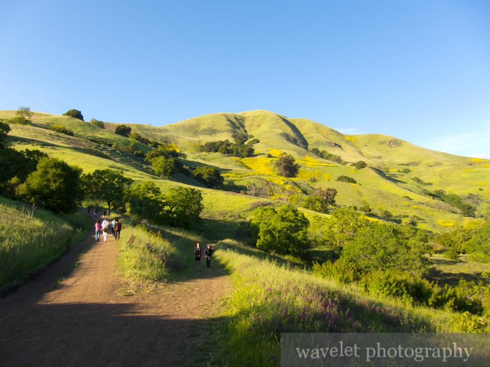 Trail, Alum Rock Park