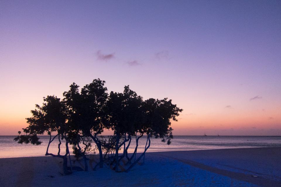 Ritz-Carlton Hotel, Aruba