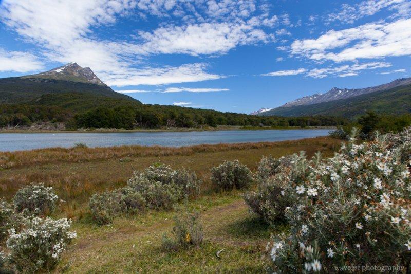 Roca Lake, Tierra del Fuego N. P.
