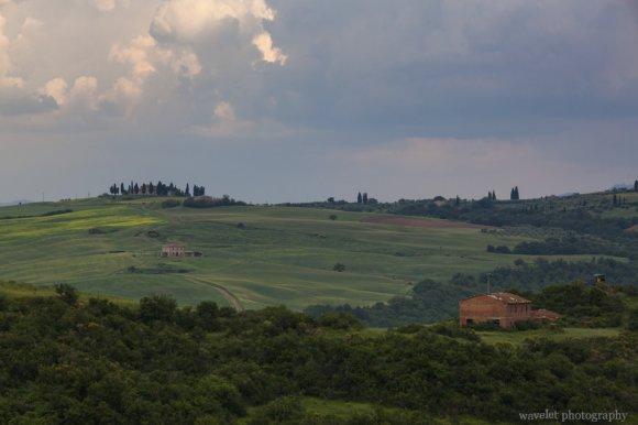 On SP137, near Torrenieri, Southern Tuscany