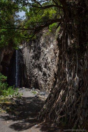 Momella-Tululusia Waterfall, Arusha National Park, Tanzania