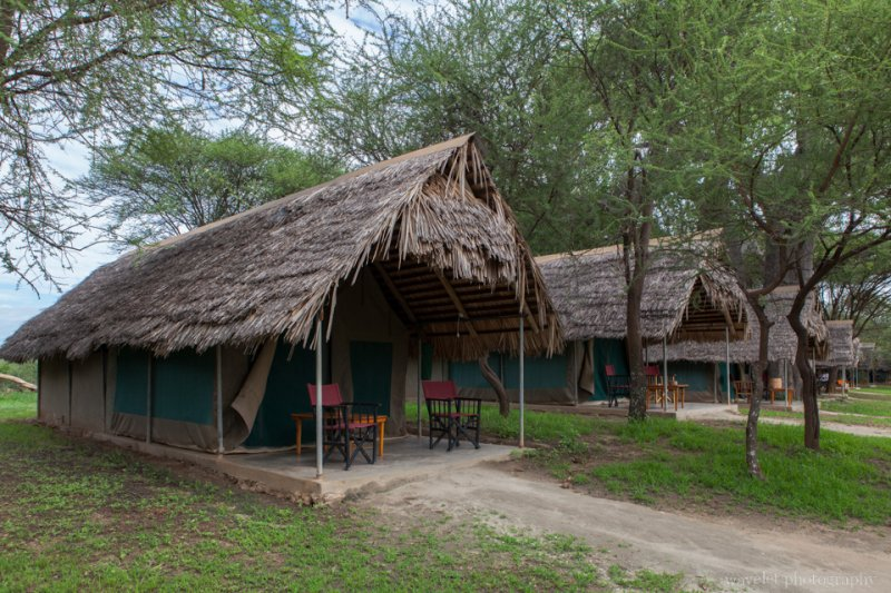 Camps in Tarangire Safari Lodge