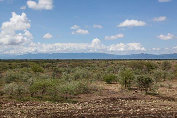 From Tarangire to Lake Manyara