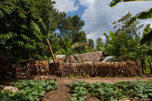 Village near Mto wa Mbu