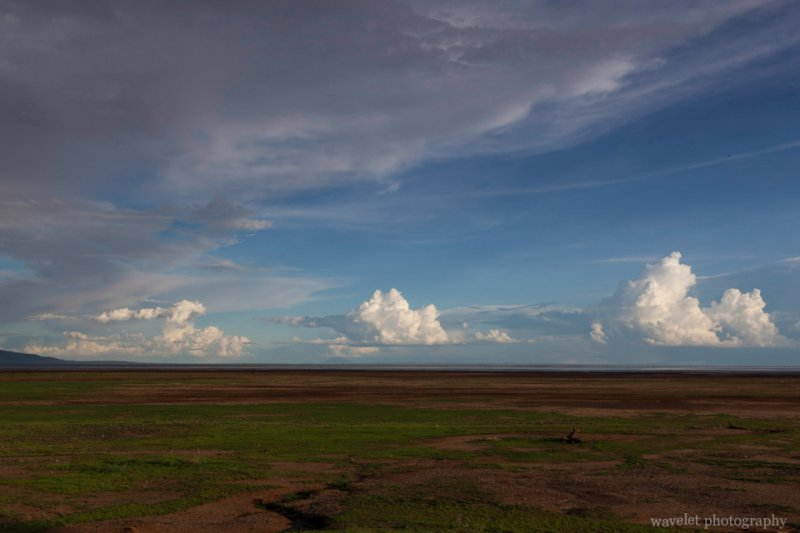Lowland in the south end of Lake Manyara National Park
