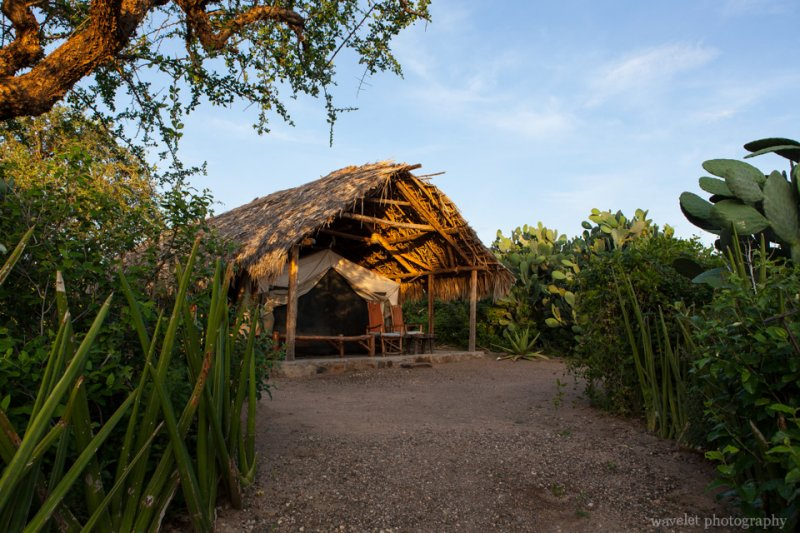 Tindiga Tented Camp, near Lake Eyasi