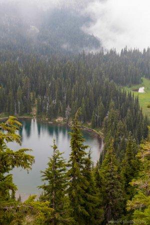 Sunrise Lake, Mt. Rainier