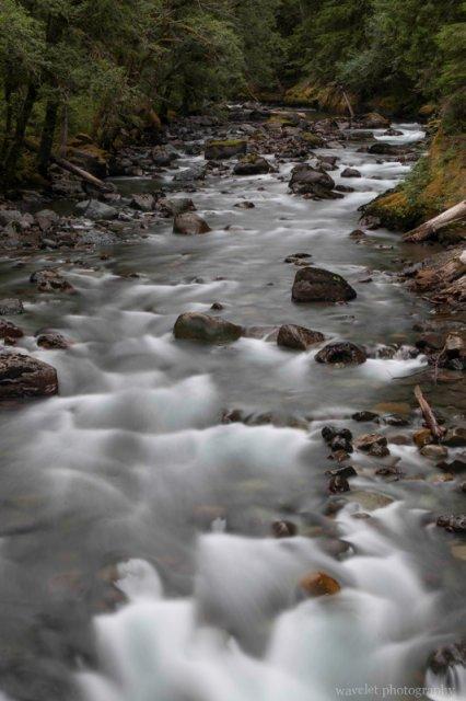 Ohanapecosh River, Mt. Rainier