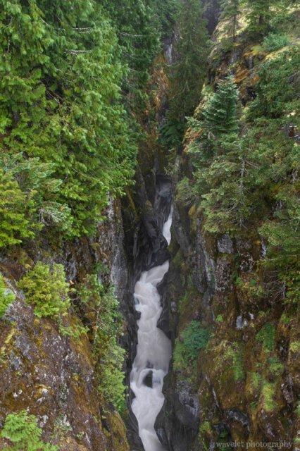 Box Canyon, Mt. Rainier