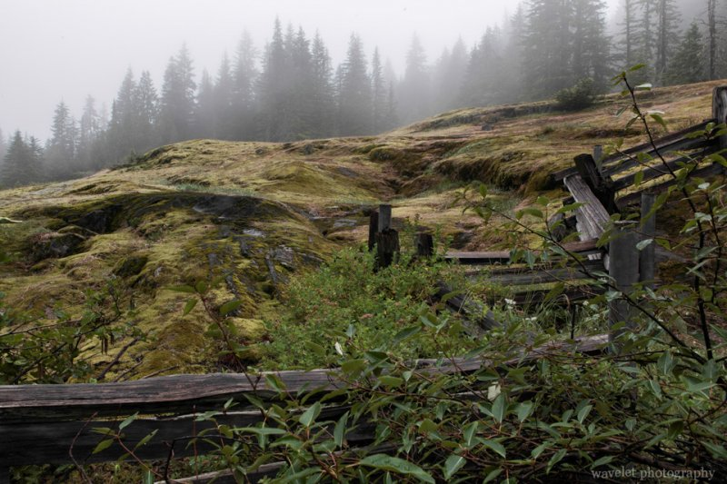 Box Canyon Loop, Mt. Rainier