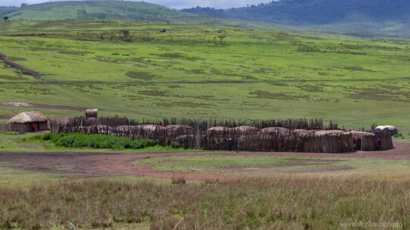 A Maasai village for tourist near Ngorongoro Conservation Area.