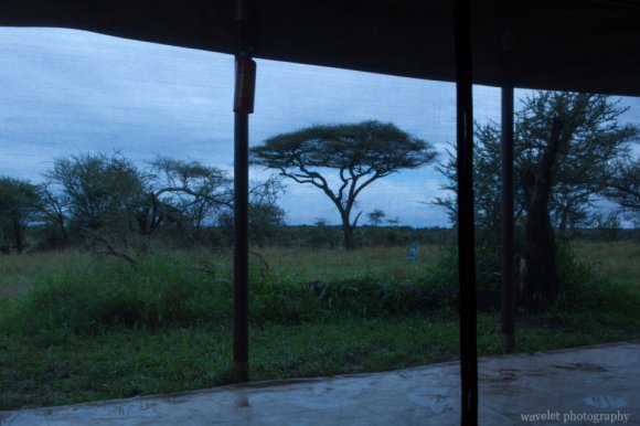 Ang'ata Camps, Serengeti National Park