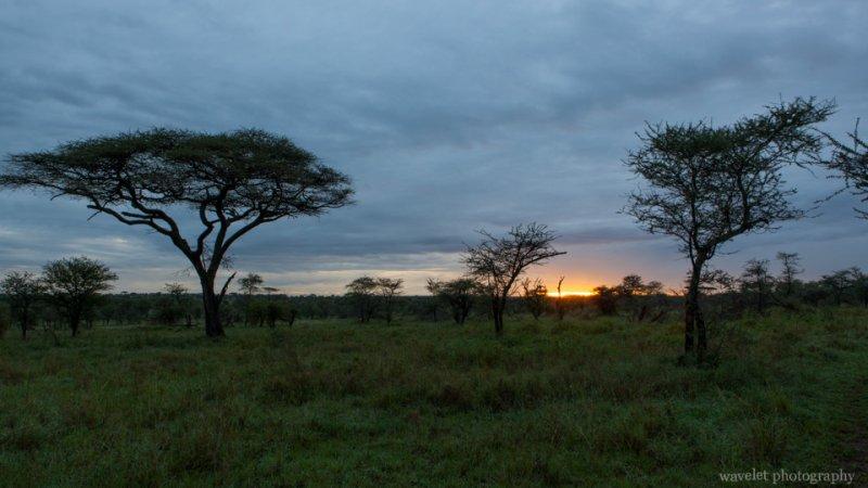 Sunrise over Serengeti National Park