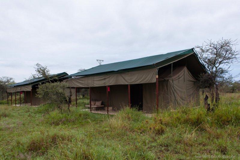 Ang'ata Camps, Serengeti National Park