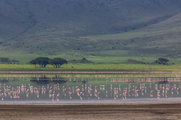 Lake Makat in Ngorongoro Crater