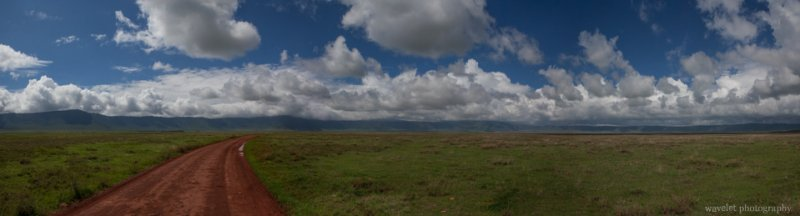 Panorama view of Ngorongoro Crater from the floor