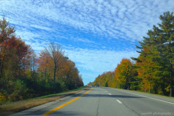 Fall color on I-95, Maine