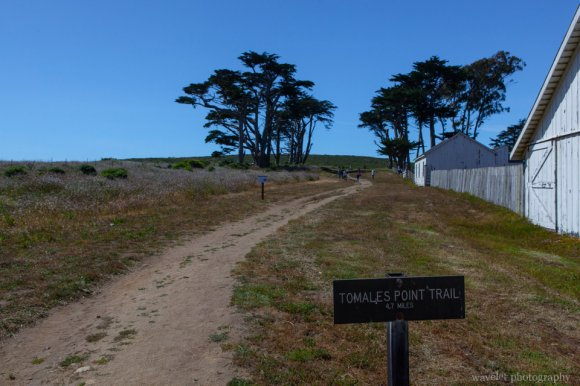 Tomales Point Trailhead, Point Reyes