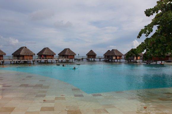 Infinity Pool, Moorea Pearl Resort