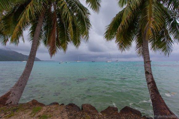 Near Opunohu Bay, Moorea