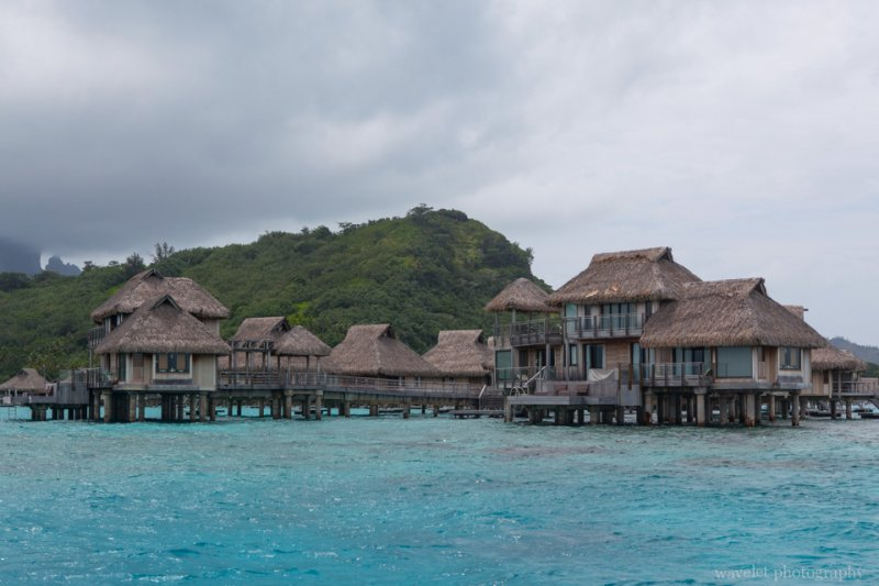 The largest overwater bungalows, Shark and Ray feeding tour, Bora Bora