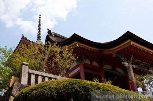 Kiyomizu Temple (清水寺,京都)