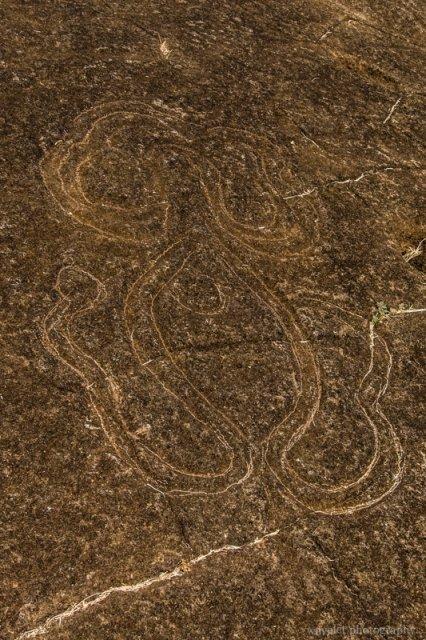 Papa Mangai, petroglyphs of a heke (octopus), Papa Vaka, Easter Island
