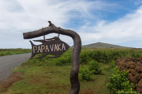 Papa Vaka, a premiere site of  ancient rock artrock art, Easter Island