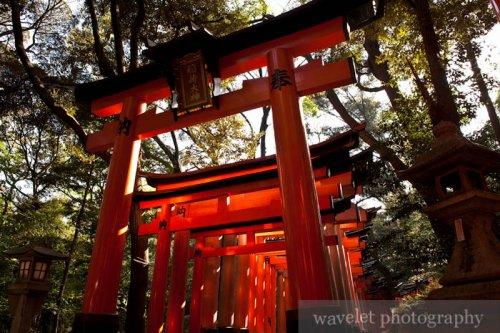 Fushimi Inari Shrine (伏見稲荷大社)