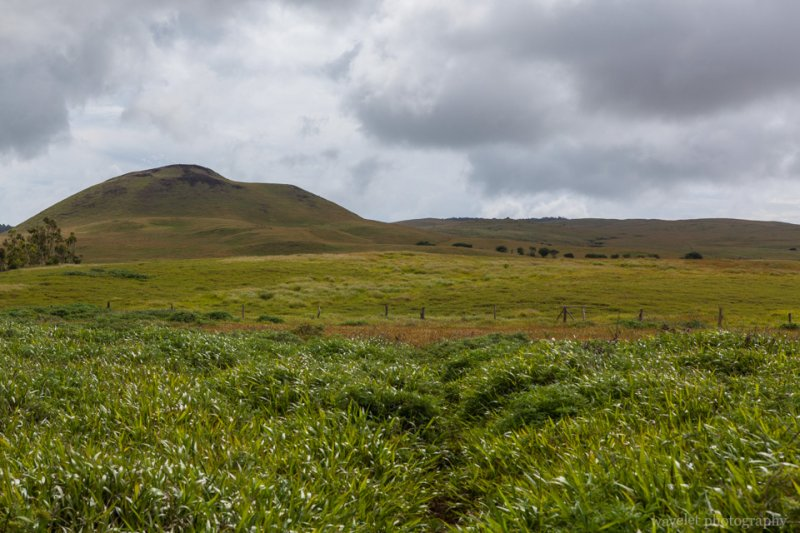 Inner island landscape, Easter Island