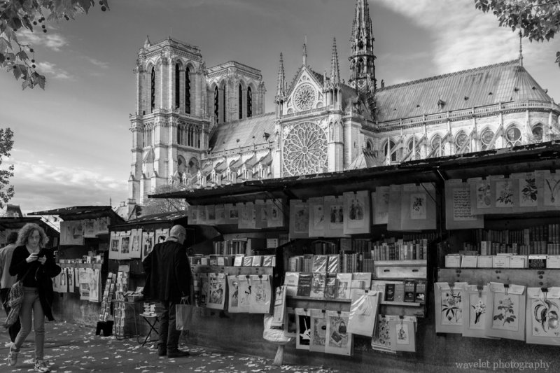 Bouquinistes by the Siene and Notre-Dame, Paris