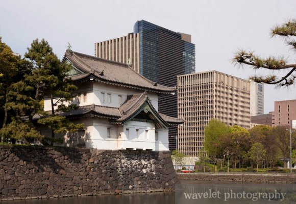 Imperial Palace (皇居)