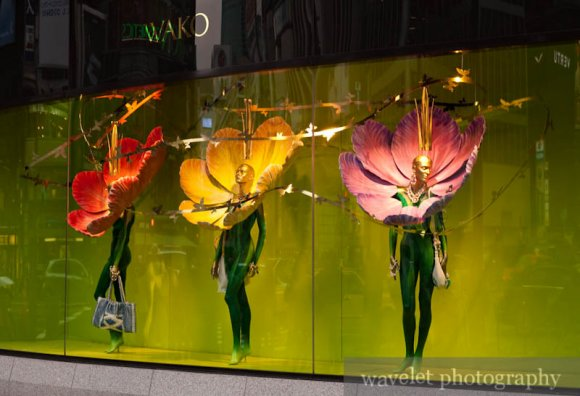 Ginza Window Display