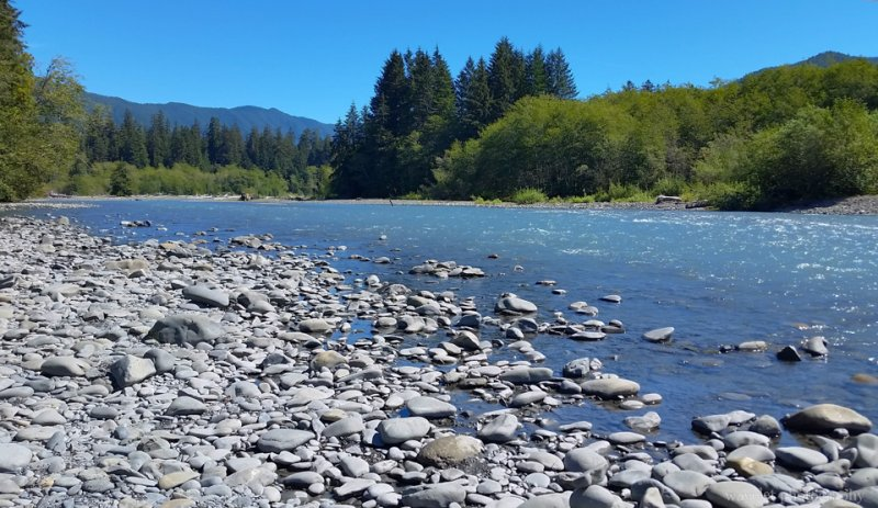 Hoh River, Olympic National Park, Washington