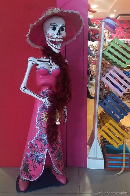 Skull in Los Cabos Airport