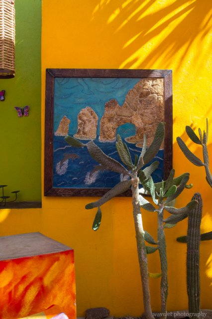 Jazmin's, San José del Cabo