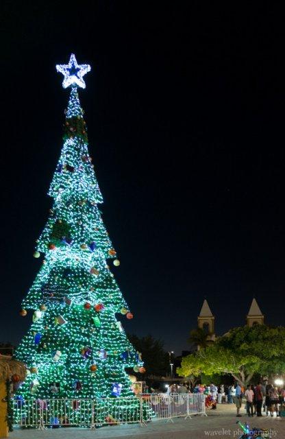 Christmas tree in Mijares Square, San José del Cabo