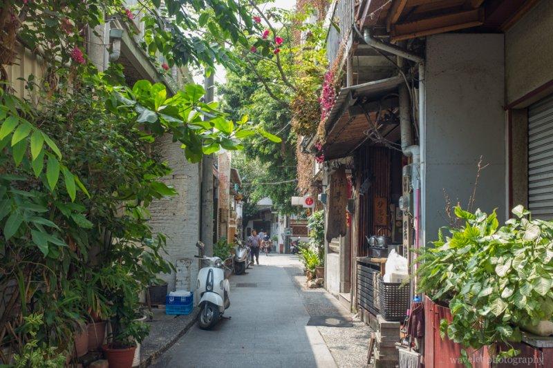 莿桐花巷,台南