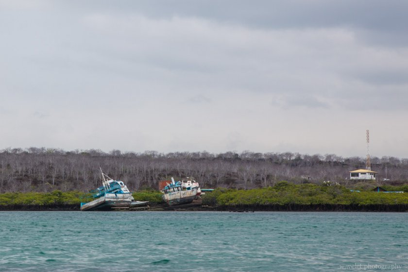 Itabaca Channel between Baltra and Santa Cruz Island
