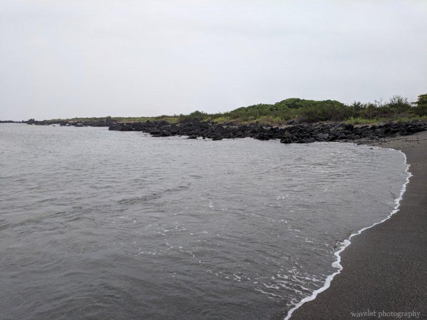 Bahía Urbina, Isabela Island