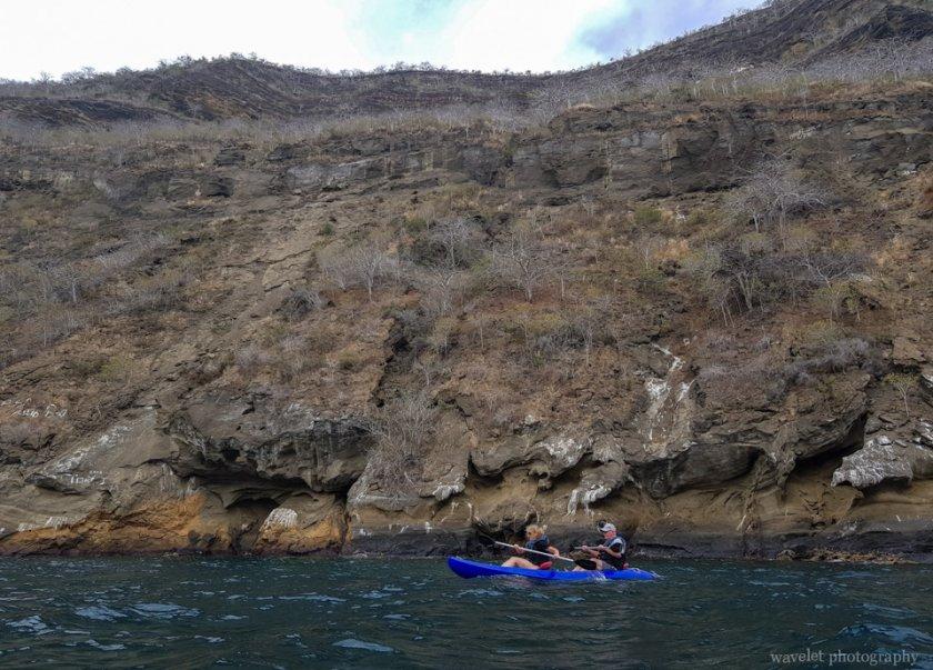 Kayaking at Caleta Tagus, Isabela Island