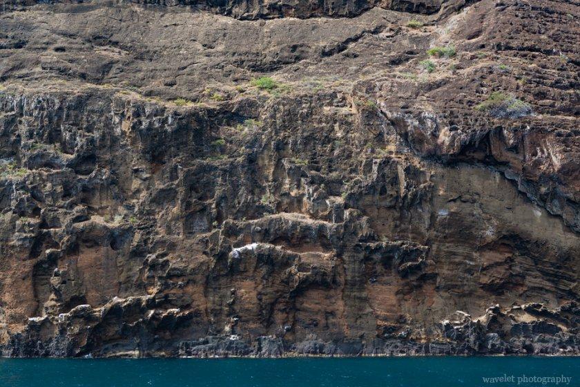 Near Cabo Cowan, Santiago Island