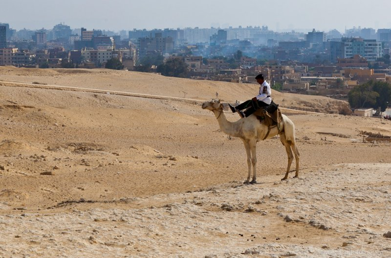 The Police Patrols the Giza Plateau