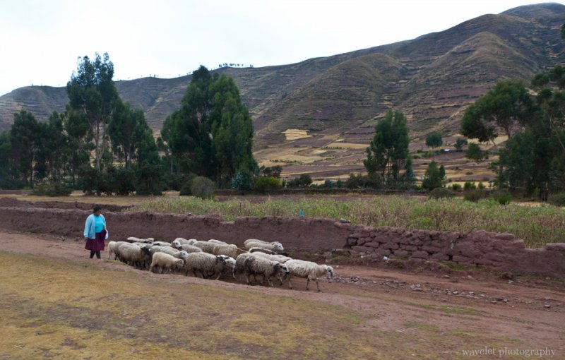 Village in Sacred Valley