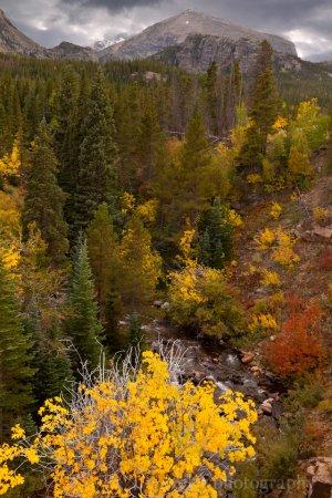 Bear Lake Rd., Rocky Mountain National Park