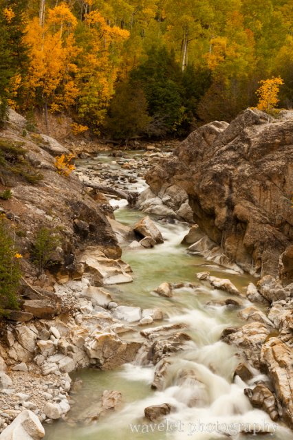 A Creek along Hwy. 82