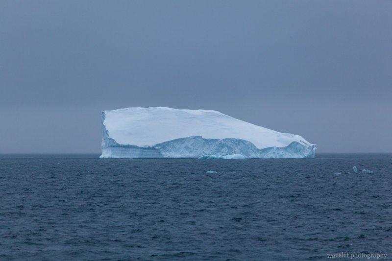 Iceberge at Antarctic Sound