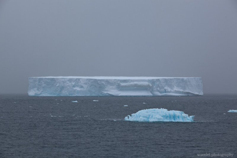 Icebergs, the Antarctic Sound