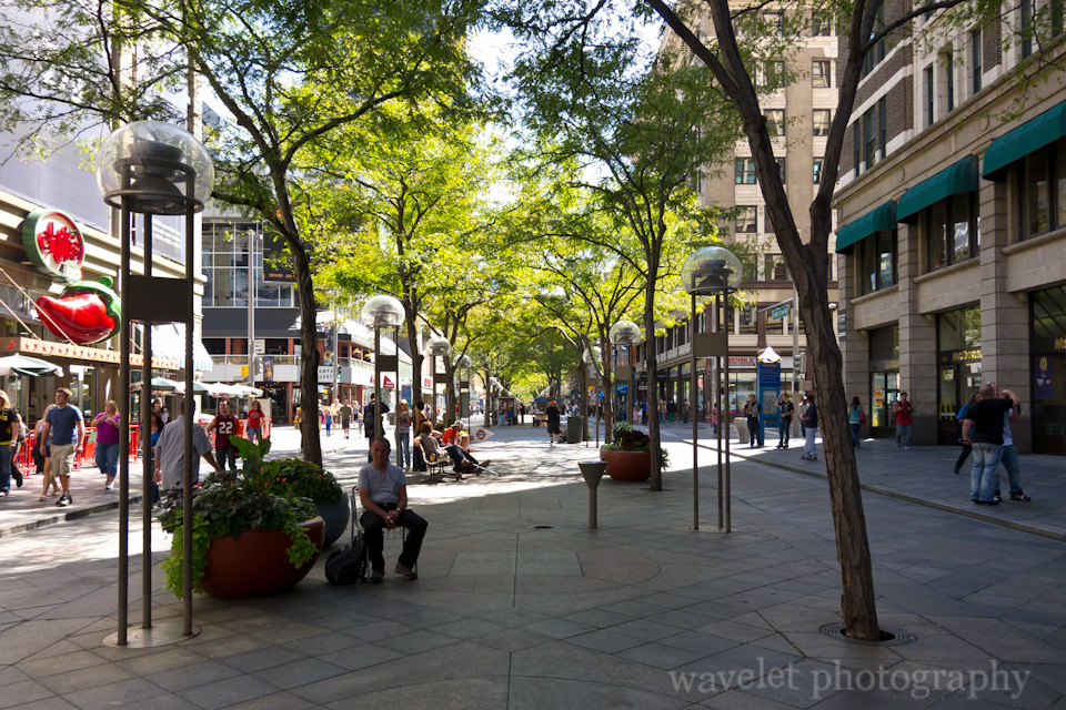 Tree-Lined Street, 16th Street Mall